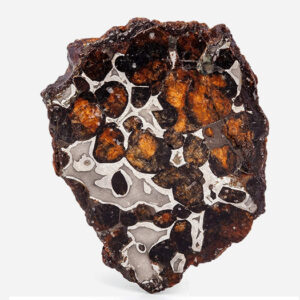 Pallasite Meteorite